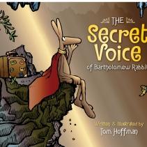 Secret Voice cover 2